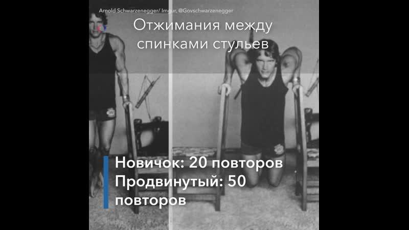 Самоизоляция Тренировка от Шварценеггера