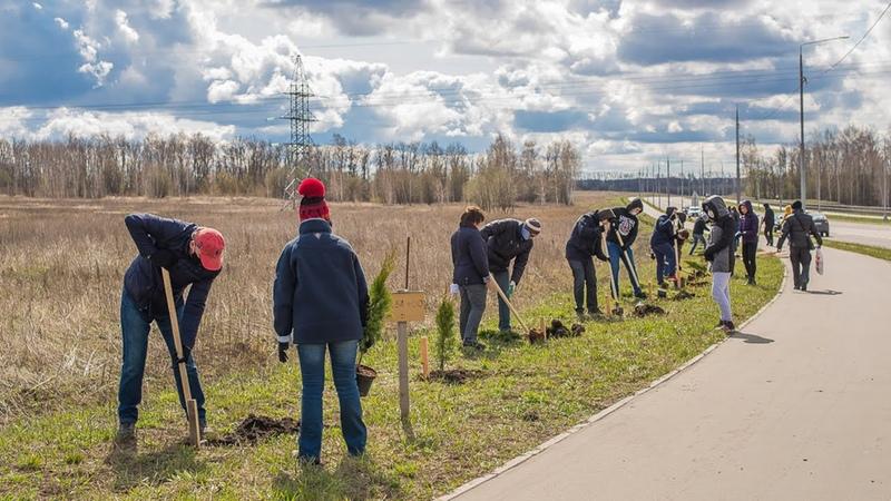 100 тысяч деревьев Корпорация развития Тульской области