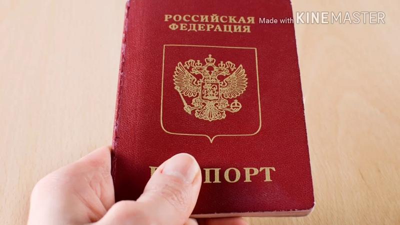 Гос. игры. Паспорт. Гарант поборов. Инструмент привязки.