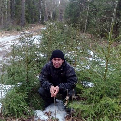 Юрий, 34, Bologoye