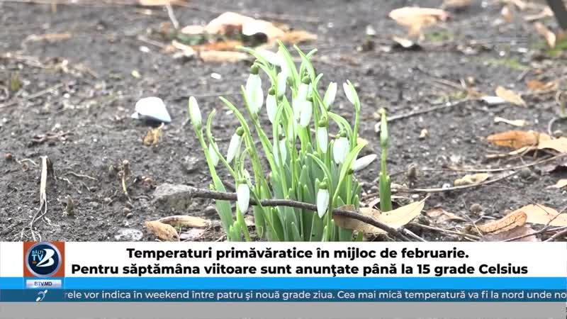 Temperaturi primăvăratice în mijloc de februarie. Pentru săptămâna viitoare sunt anunţate până la 15 grade Celsius