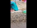 джубга. черное море