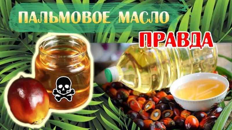 Осторожно. Пальмовое масло !